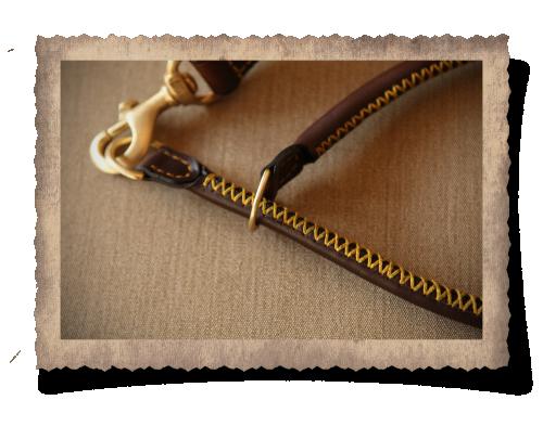 The Simonstown Trainer Dog Collar